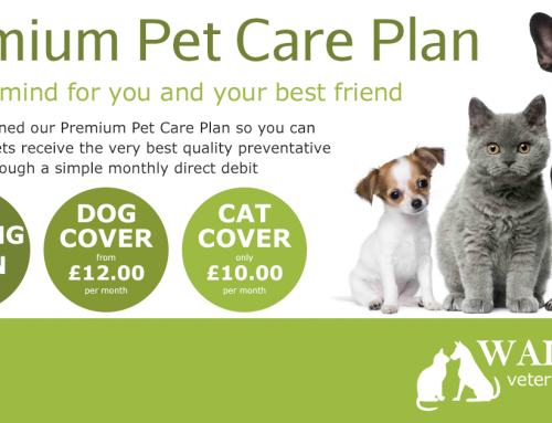 Premium Pet Care Plan
