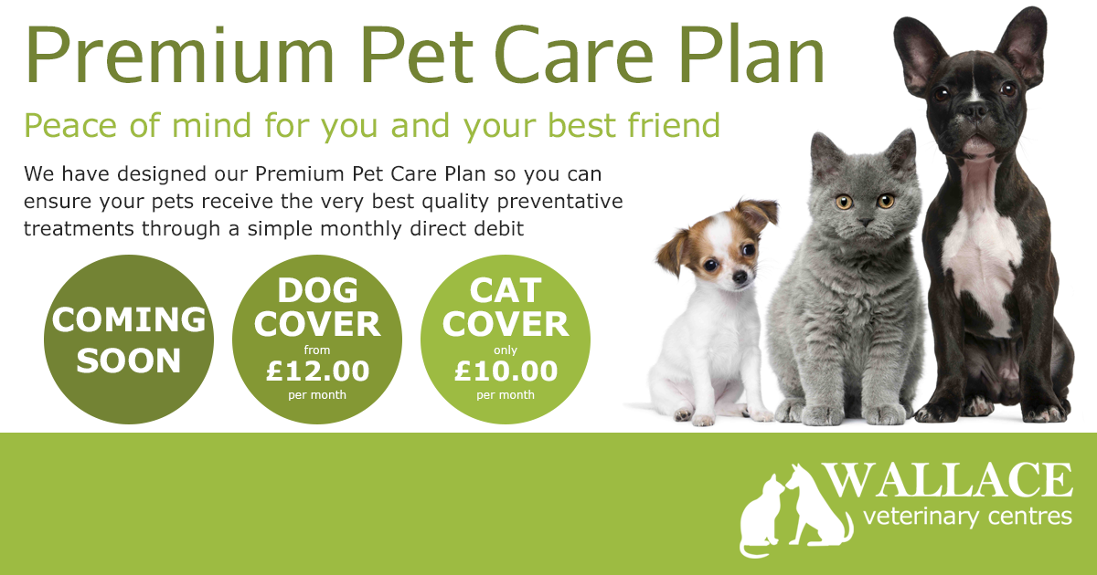 Premium Pet Care Plan
