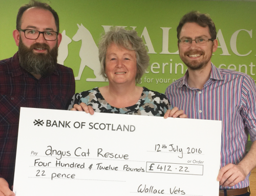 £412 raised for Angus Cat Rescue