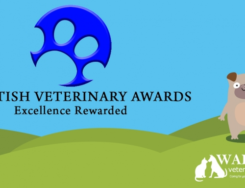 Scottish Vet Awards Nominations