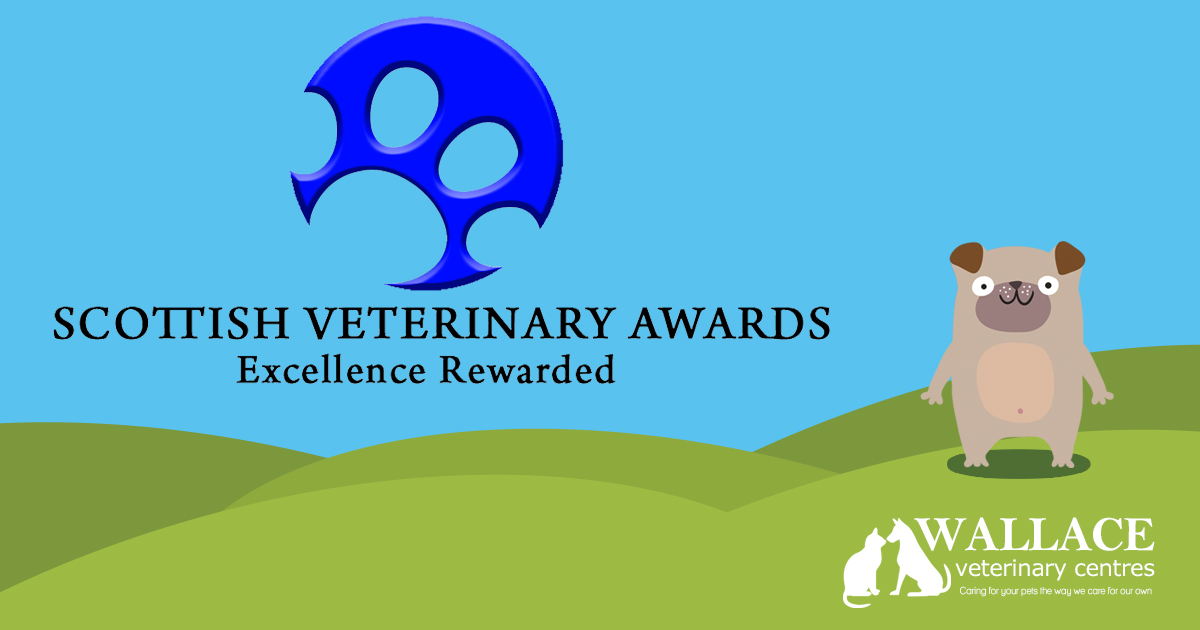 2019 Scottish Vet Awards