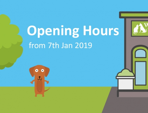 New Year, New Opening Hours!